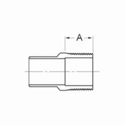1 Copper Male Adapter FTGXMPT Wrot