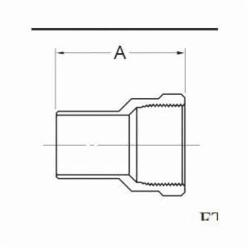 1 Copper Female Adapter FTGXFPT Wrot